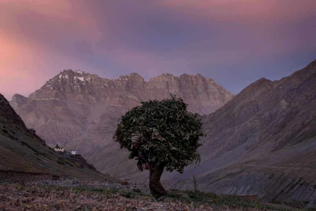 Spiti Valley, Mud, Pin Valley, Himachal Pradesh, India
