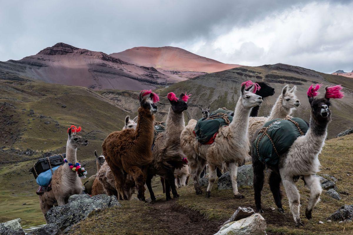 wycieczki-peru-ausangate-trekking